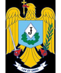 Tricouri Jandarmeria Română